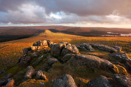 Golden light over the landscape. Leather Tor, Dartmoor